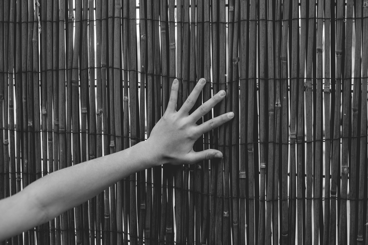 Una mano sobre un muro de ramitas